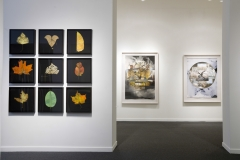 LEAF GRID & 2 OTHER WORKS FROM PHOTOSYNTHESIS  Brian Gross Fine Art, San Francisco  2012