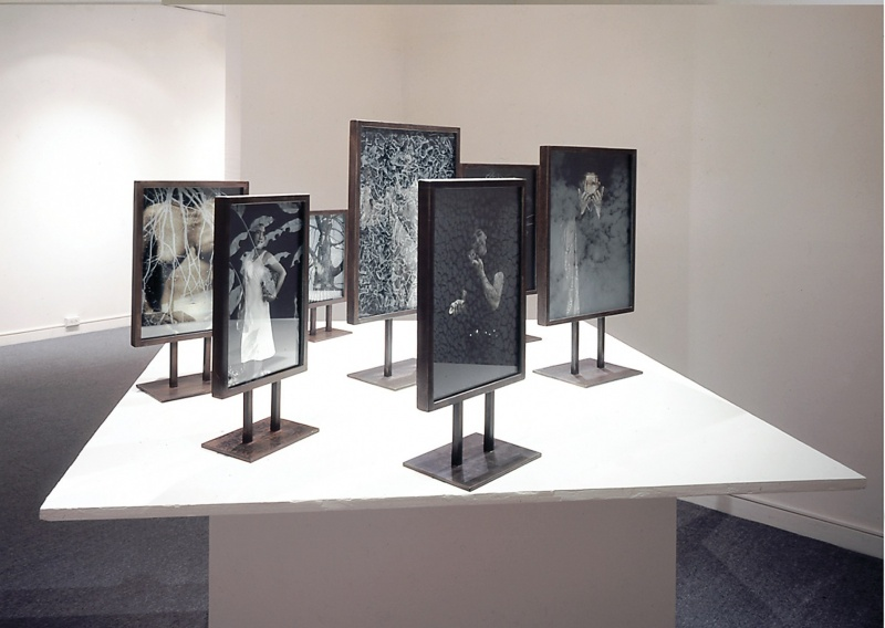 Installation view, Joan's Arc #2, ,7 of 9 standing sentry figures of variable sizes, all duraclear transparencies sandwiched between two sandblasted photo images on glass, in steel standing frame